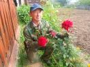 Розы-великаны